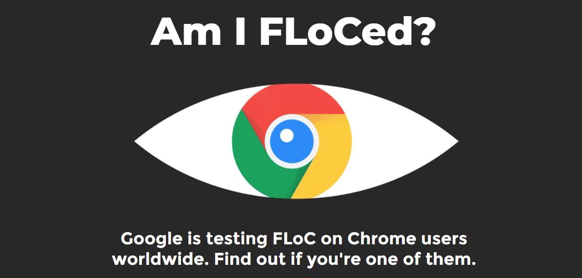 你被 FLoCed 了嗎?檢測從這裡去! 25